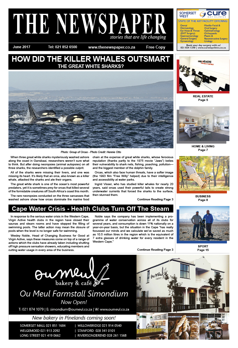 The Newspaper - 42th Edition