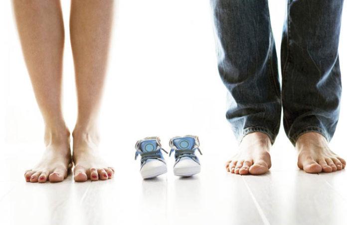 Fertility Show